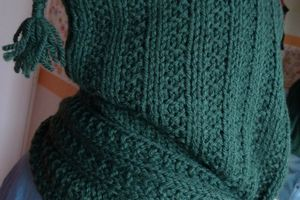 Echarpe capuche simple à tricoter