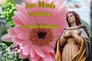 MESSAGE DE LA TRES SAINTE VIERGE MARIE À SA FILLE BIEN-AIMEE LUZ DE MARIA - 3 MAI 2017