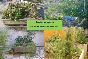 Créez votre petit jardin en ville!