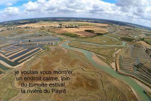 Photos aériennes de la rivière du Payré et des marais