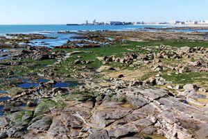 La baie des Sables d'Olonne à marée basse