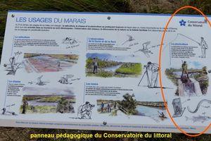 Pisciculture à Olonne sur Mer : Nasse du marais à poissons