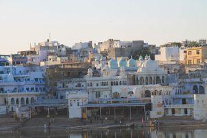 Pushkar, la révolte du pigeon français
