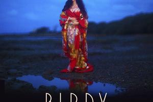 Birdy - Shadow