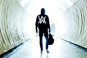 Alan Walker & DJ Tiesto - Faded (Northern Lights Remix)