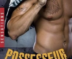 Reapers Motorcycle Club : Tome 1 Possesseur
