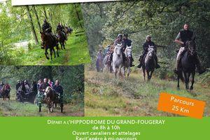 Rando à Grand-Fougeray (44) dimanche 25 septembre 2016