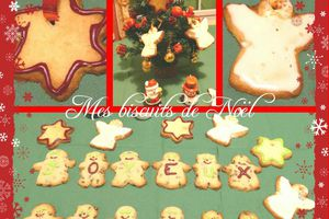 Biscuits canelle / chocolat et passion / coco - Foodista Challenge #14