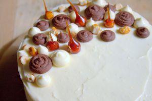 Layer cake chocolat et noisettes