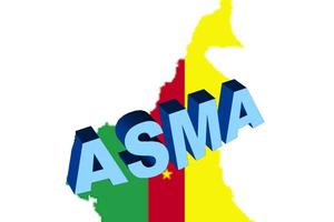 Communiqué de ASMA (Action Solidaire pour Marafa)  suite à la conference de presse de Issa Tchiroma sur l'Avis rendu par le Groupe de Travail de l'ONU sur la Détention Arbitraire.