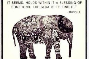 Buddha - English - 22 Quotes