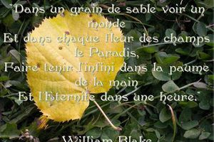 William Blake - 2 Citations