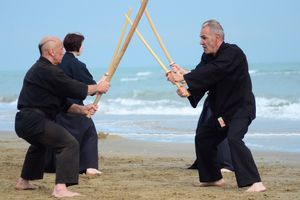 STAGE KARATE DO SHOTOKAI et ARMES 5 juillet 2015