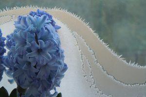 dix leçons de jacinthe