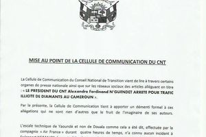 MISE AU POINT DE LA CELLULE DE COMMUNICATION DU CNT