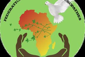 BIENTÔT LA MÉDECINE TRADITIONNELLE EN CENTRAFRIQUE