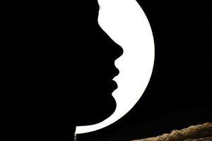 Voyage au coeur de la nuit: poème.