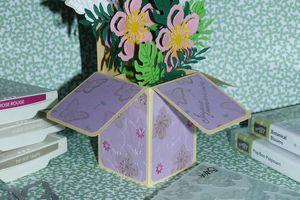 Jardin botanique carte box