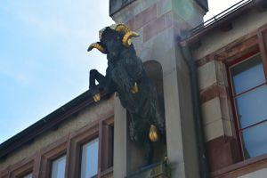 Stockach-Schaffhouse-Clap de fin