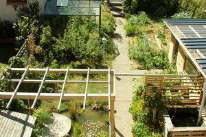 Micro-Jardin : un exemple à suivre