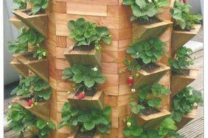 Cultiver l'espace en vertical : vive les tours de fraises dans le potager !