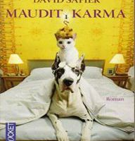 'Maudit karma' - David SAFIER