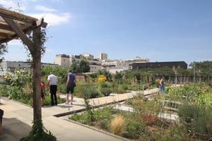 Le Jardin sur le toit, une bulle d'oxygène en plein Paris