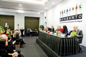 Monsanto a un impact négatif sur les droits humains fondamentaux