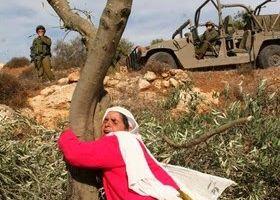 40è Journée de la terre en Palestine / Historique + video