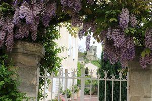 Saint Emilion, trésor girondin