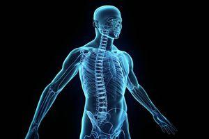 Autophagie - Comment votre corps se détoxifie et se répare lui-même