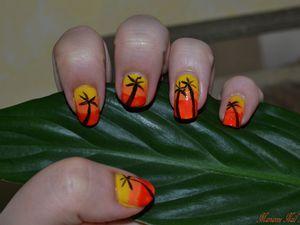 Dégradé et Palmiers