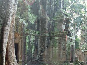 Indiana Jones, Indiana Jane et les temples perdus