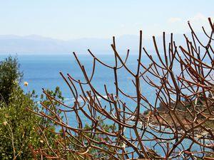 Le ciel bleu, la mer bleu. Non, ce ne sont pas les photos qui rendent ce lieu si merveilleux, il l'était. Vraiment !