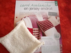20X20, Jersey endroit, AVALANCHE