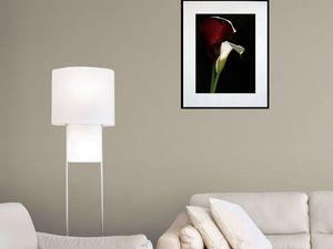 photo-de-fleur-arôme-FL1199