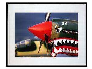 photo-avion-curtiss-P-40-warhawk-AV0256