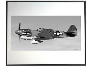 photo-avion-curtiss-P-40-warhawk-AV0487