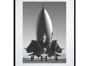 photo-avion-grumman-F-14-tomcat-AV1020