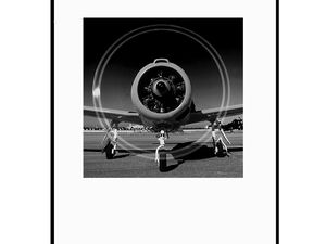 photo-avion-north-american-T-28- AV2489
