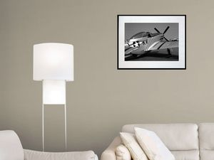 photo-avion-north-american-P-51D-mustang-AV2558