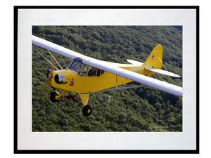 photo-avion-piper-J-3-Betty-Boop-AV2573