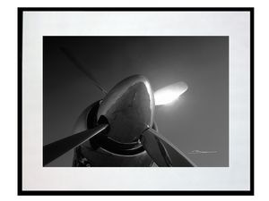 photo-cone-helice-de-sea-fury-AV2602