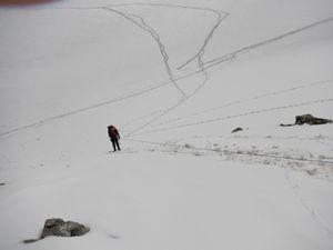 Révision glacière et les Agneaux