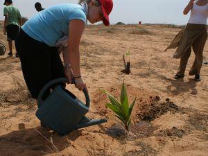 Anna Madrigali est venue planter elle-même son arbre en avril 2011! Le voici maintenant! (mai 2013)