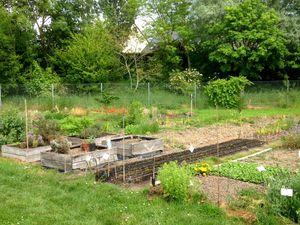 Photos du jardin partagé le 20/05/2016