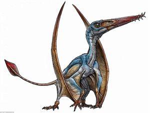 Une nouvelle espèce de ptérosaure découverte en Patagonie