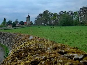 Tillington, West Sussex. Views of the Petworth Park and Tillington church with its Scots Crown of All Hallows