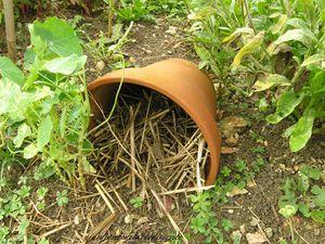 Une vieille souche aménagée pour les insectes pollinisateurs, un tressage de saule garni de foin, un pot cassé recyclé avec de la paille