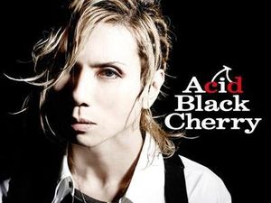 Photos des groupes : Tokyo Girl's Style, Acid Black Cherry, NOAH, Block B.